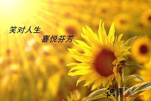 笑对人生 喜悦芬芳
