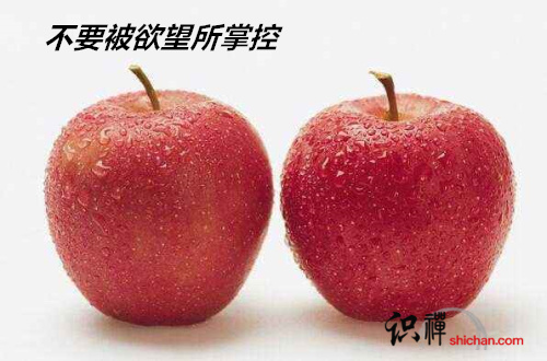 有两个足够充饥的苹果就足够了